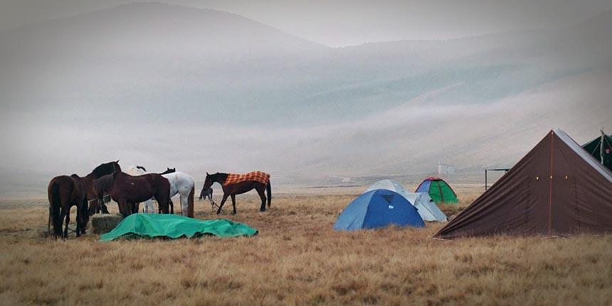 Cavalli e tende al Pantano