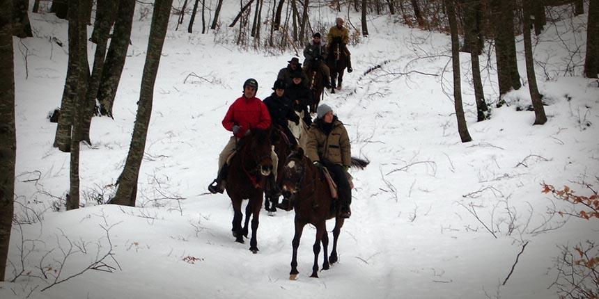 Trekking a cavallo tra la neve