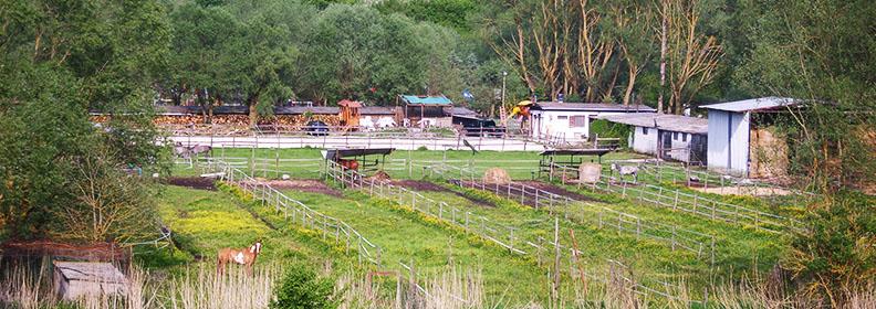 Pensione per cavalli del Ranch Brionna in Abruzzo